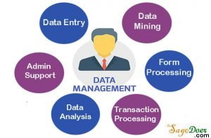 Cheap Data Management Service